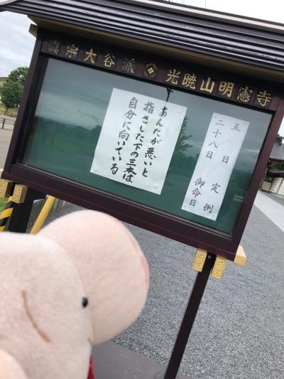 537_Fotor.jpg