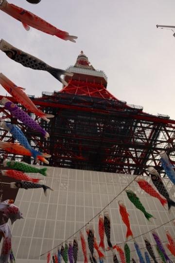 ashikaga374_Fotor.jpg