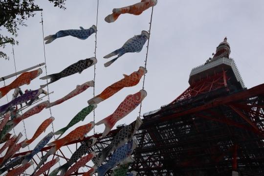 ashikaga382.jpg