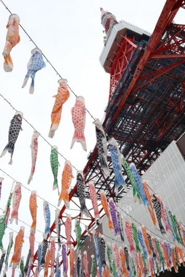 ashikaga387_Fotor.jpg