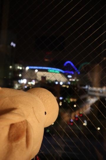 ashikaga459_Fotor.jpg