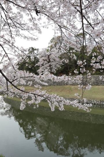 shiga369_Fotor.jpg