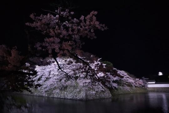 shiga473_Fotor.jpg