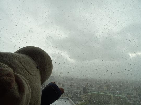 taifuu23.jpg