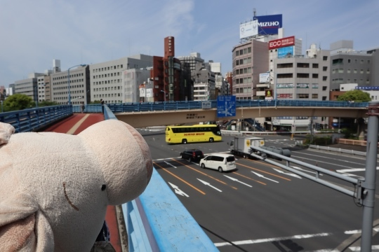 tokyodome50.jpg